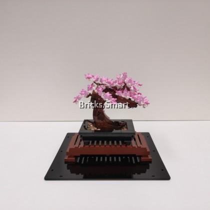 Acrylic Case with Black Base for 10281 LEGO Creator Expert Bonsai Tree